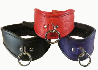 Collars/Leashes